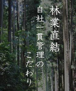 林業直結のこだわり