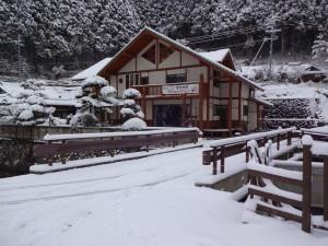 雪20170124 (1)